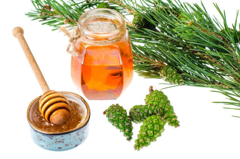 Ancient pine syrup Ketonised – Magic from the Schinias forest