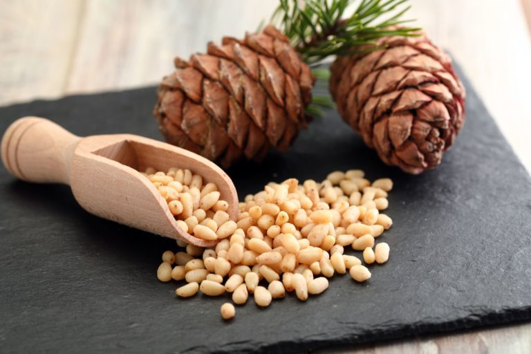 Pine nuts are totally Keto – Protein boost from the ancient forest